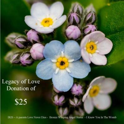 Legacy of Love $25 Donation